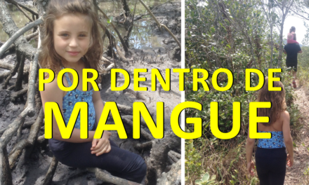 O MANGUE – Ilha do Cardoso Parte 3 [ Homeschooling ]